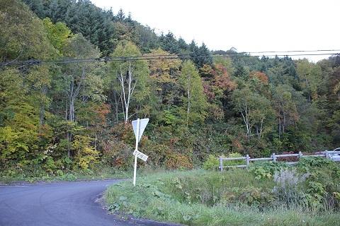 名母トンネル付近瑞穂パーキング周辺の紅葉状況